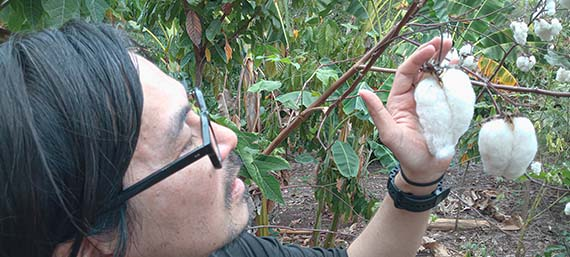 Customer observing an Organic Cotton boll in the Amazon